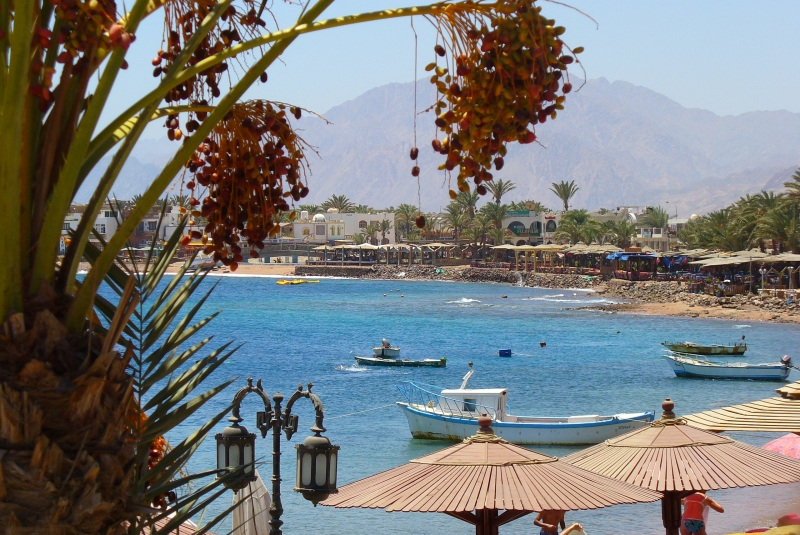 Egyptian Museum and Pyramids of Giza Over Day Tour from Dahab In Group By Bus