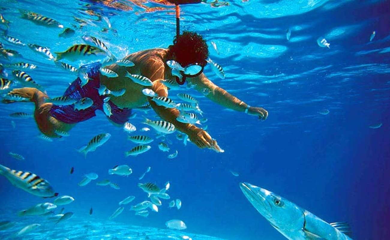 Ras Mohamed Snorkeling Trip and Day Tour by Boat