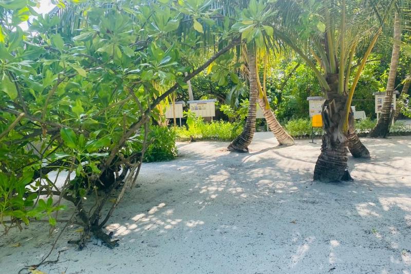 Maldive 5 Star