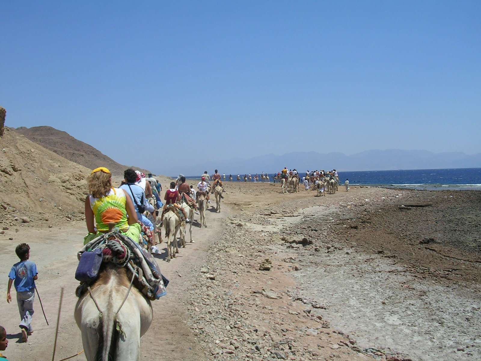 Blue Hole and Ras Abu Galum Snorkeling One Day Trip by Camel