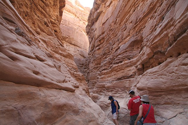 Full Day Tour to White Canyon, Ain Khodra Oasis, Closed Canyon from Dahab by Camel