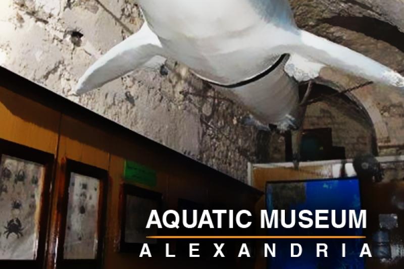 Aquatic Museum