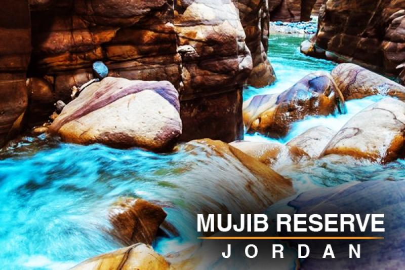 mujib