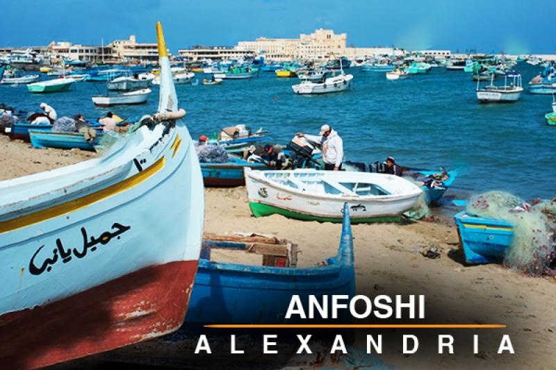 Anfoshi