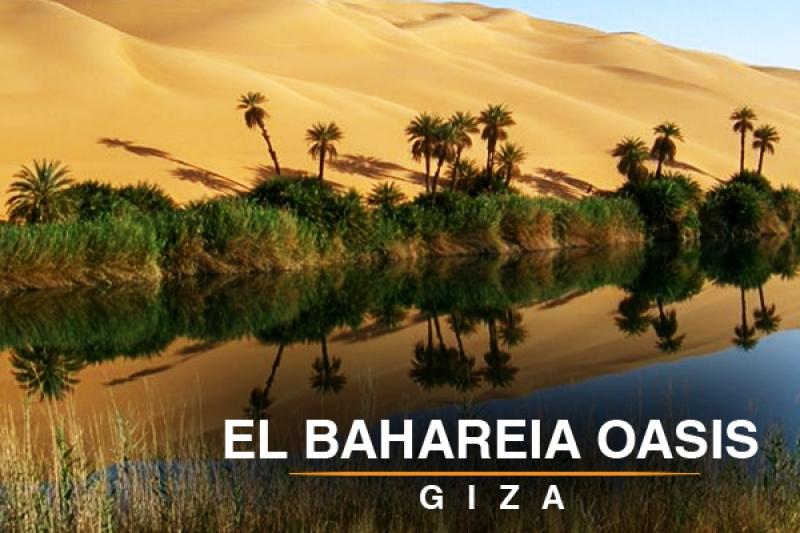 El baharya  oasis